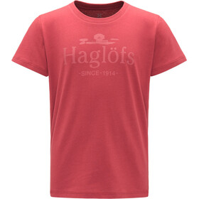 Haglöfs Camp Tee Barn brick red